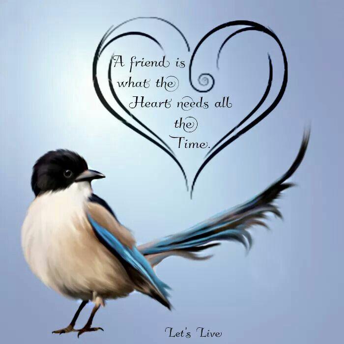 1000+ Lifetime Friends Quotes On Pinterest