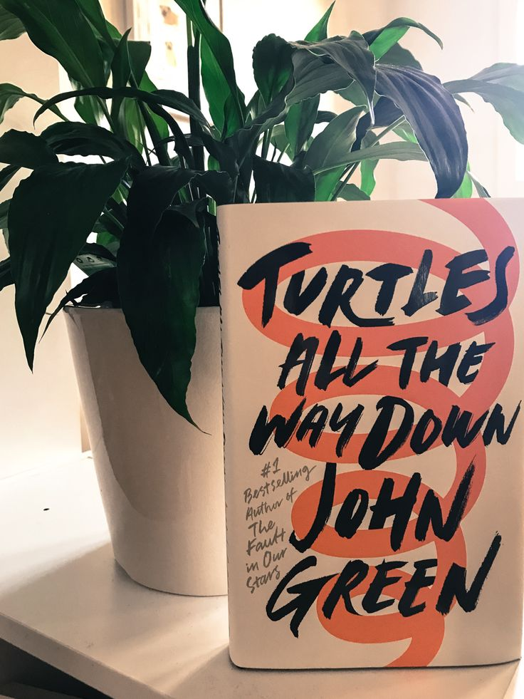 Having high expectations of a book is a dangerous thing. John Green's last book was a worldwide hit. I personally loved The Fault In Our Stars. I remember crying my eyeballs out while reading…