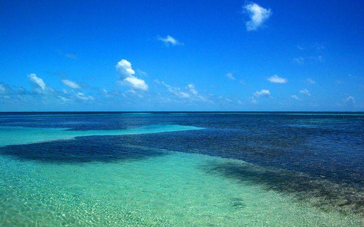 Aguas caribeñas, Cayo Caulker, Belice.