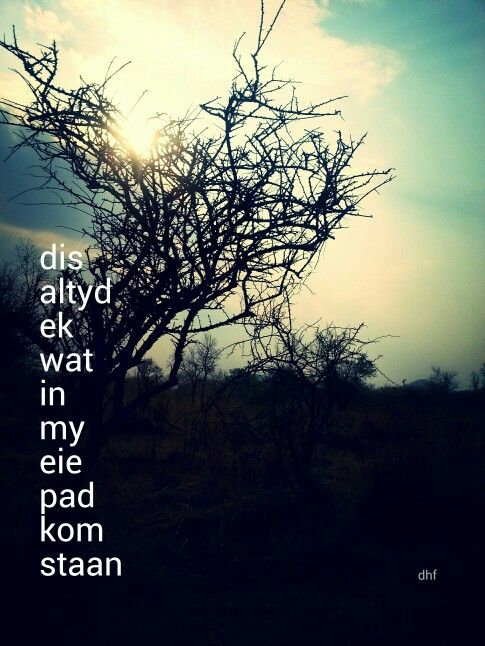 Dis altyd ek wat in my eie pad kom staan - die heuwels fantasties lirieke .. agtergrond - Limpopo bosveld (winter)