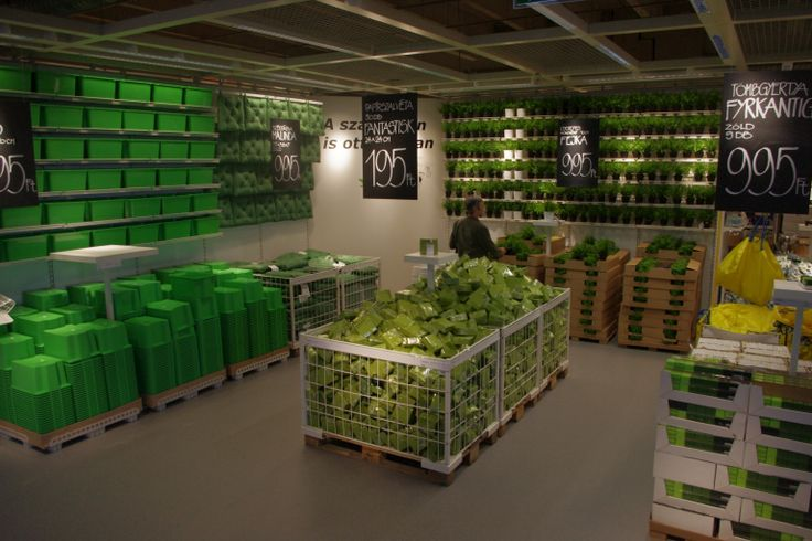 NEW Markethall Programme IKEA  - my team's merchandising