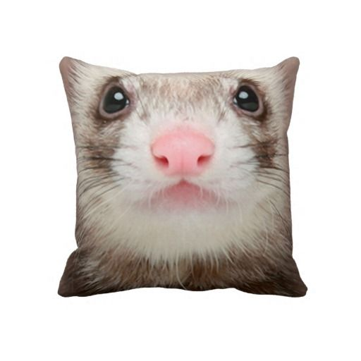 25 best Animal face pillows images on Pinterest Pillow pets, Lyrics and Text messages