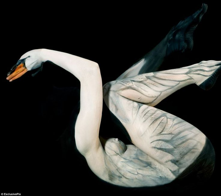 The Paintings Which Are Full Of Life Incredible Body Art - Artist turns humans amazing animal portraits using body paint