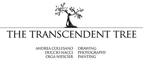 The Transcendent Tree exhibition is an encounter of three artists, each of them working with different techniques: drawing, photography and painting. The exhibition is a dialogue of artistic visions, impressions and interpretations of the tree figure; located in the natural context of a Tuscan landscape, it pays homage to our silent magnificent companions.  PIGNANO ART GALLERY 15.04 – 06.07.2017