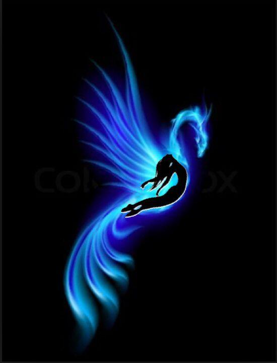 Blue Phoenix tattoo                                                                                                                                                     More