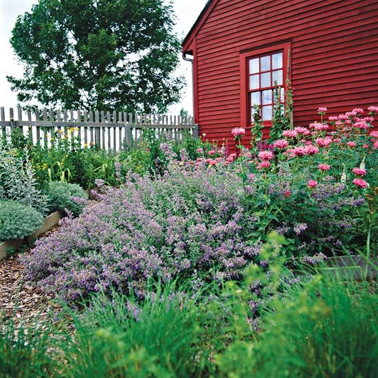 Gardening in Drought Conditions: Article can be viewed at http://www.bhg.com/gardening/yard/garden-care/gardening-in-drought-conditions/?sssdmh=dm17.613425=nwgn081612=1572235658