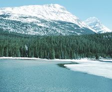 Manantial natural de agua: los efectos beneficiosos del agua varían en función de su composición.