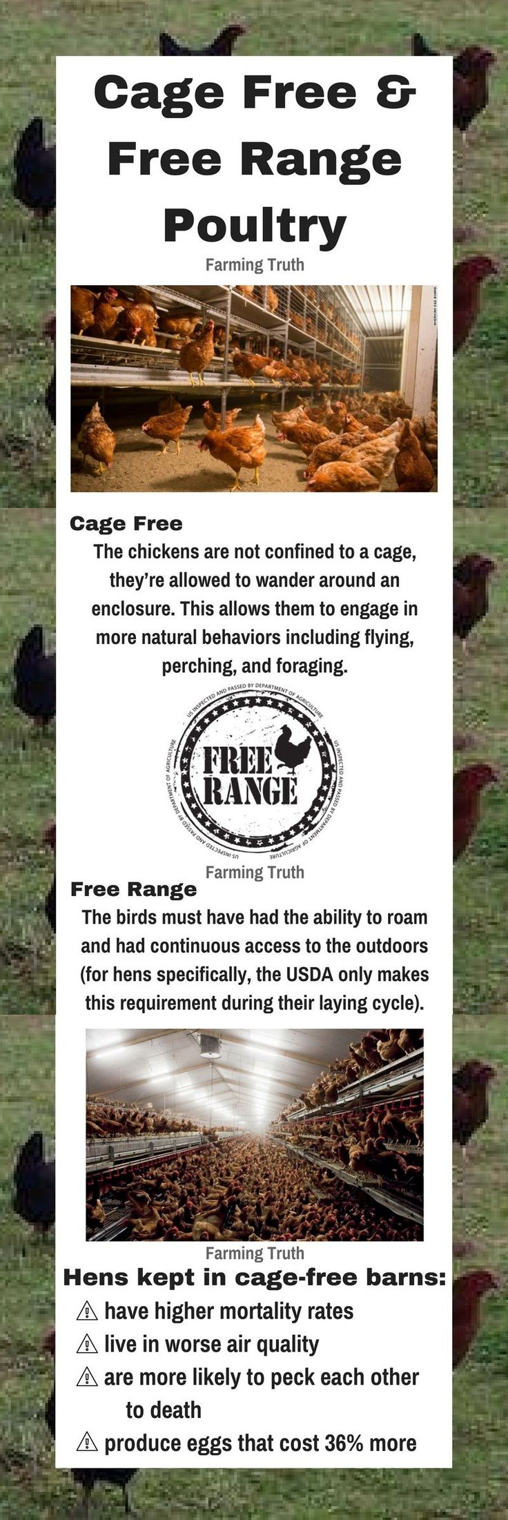 Are cage free and free range poultry, including laying hens and broiler meat chickens, raised more humanely? Focusing on farm animal welfare.