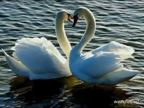 ♥♫Touch my soul - FRANK DUVAL♥♫(Relaxing and romantic music♥♫)