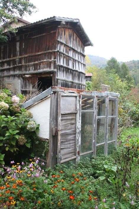 una vecchia serra, un lembo di giardino domestico e una baracca in legno lacasadegliorti.wordpress.com