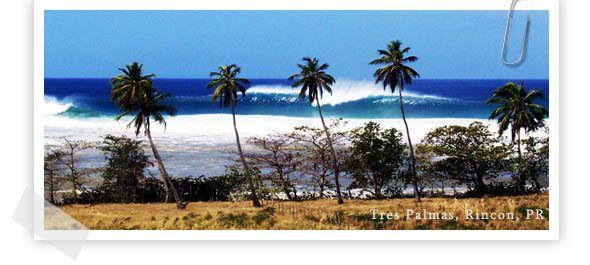 Rincon Surfing Handbook