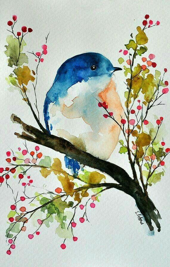 птица на ветке рисунок красками