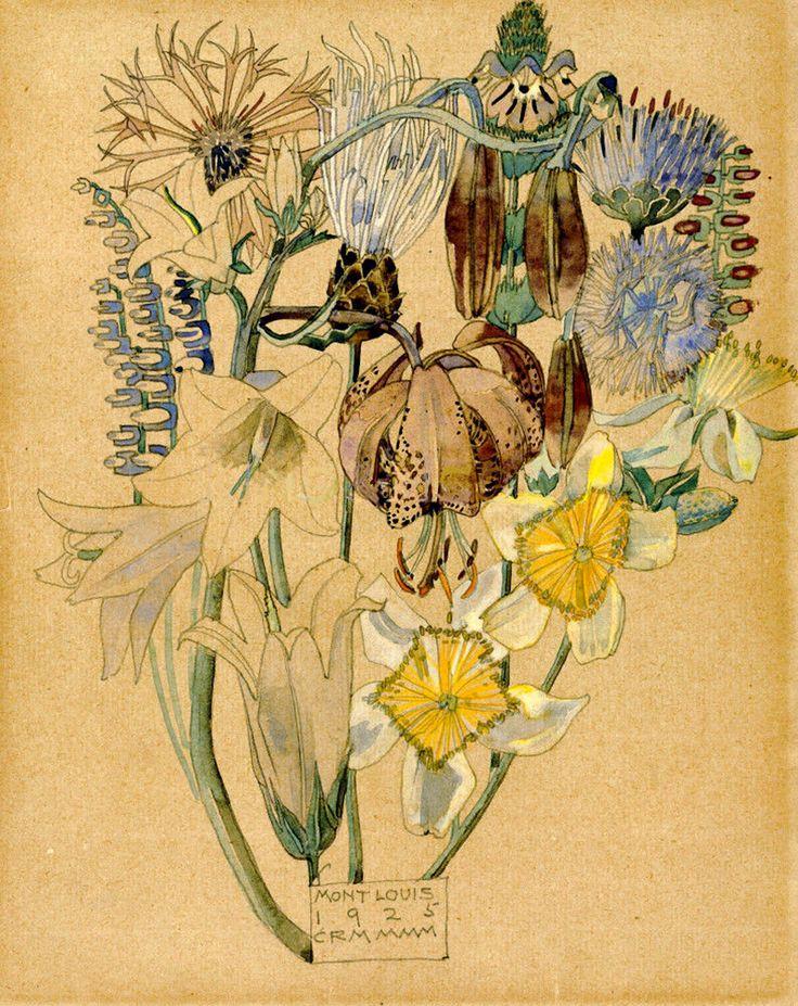 Charles Rennie Mackintosh (Scottish, 1868-1928) Flower Study, Mont Louis, 1925 More