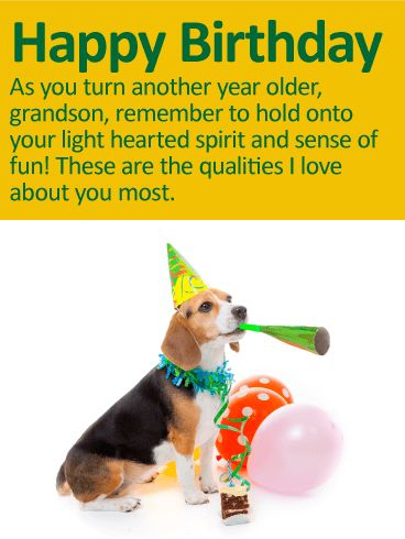 To my Fun Grandson - Happy Birthday Wishes Card: With balloons, party hat and horn, this party pooch is ready to help you celebrate your grandson on his birthday! This fun birthday card also comes with an important message. It's a reminder to him that no matter how old he gets, he should always hold onto his lighthearted spirit, as it's one of the qualities you love about him most.