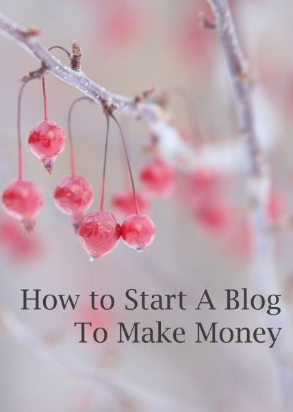 how to start a blog to make money #blog #blogging http://livedan330.com/2014/12/04/how-to-start-a-blog-to-make-money/