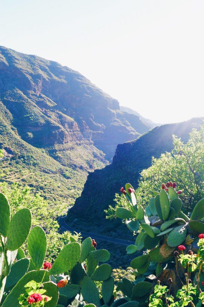 This is a 7-day itinerary guide for traveling in Gran Canaria, Canary Islands! You will see sand dunes like the Sarahan desert, Jurassic Park-like mountains and cliff-hugging roads on the same island! | Barranco de Guayadeque |So Finely Lived
