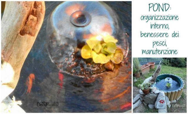 decoriciclo: Il nostro pond, parte 2: come abbiamo organizzato l'interno per i pesci + manutenzione