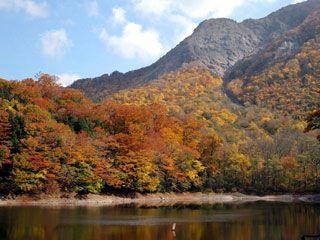 十二湖の写真1