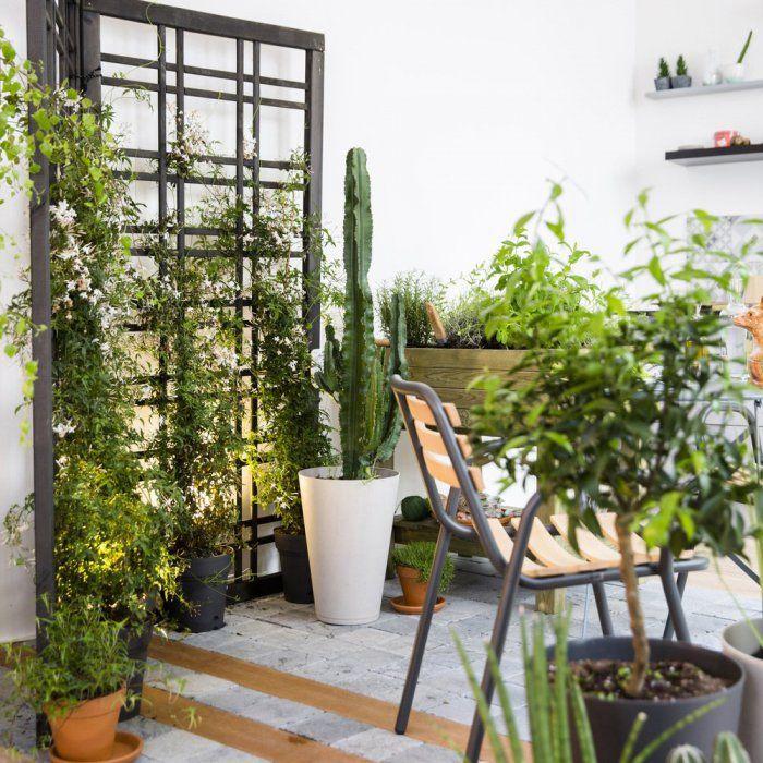 1000 id es propos de treillis jardin sur pinterest. Black Bedroom Furniture Sets. Home Design Ideas