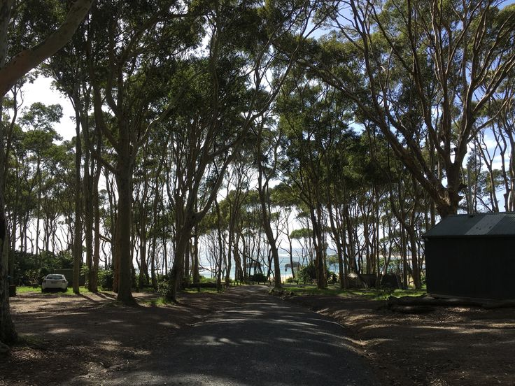 What a view - Mystery Bay Campground, NSW