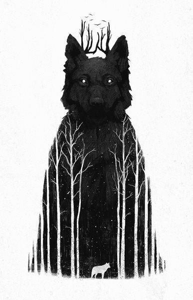 dark and light wolf