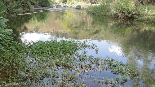 Circuito das Aguas : Se algo for por água abaixo, não desvie sua correnteza... Pois é da foz de rios que nascem belas cachoeiras. | caiquecandido