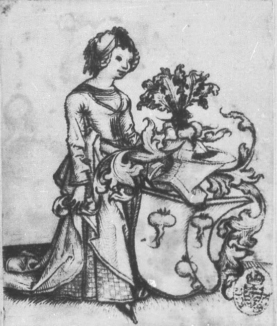 Master of the Housebook. Lady with Radish Coat of Arms. c. 1475/1500. National Art Collections Dresden. Dresden, Germany. Note pattern on underdress.