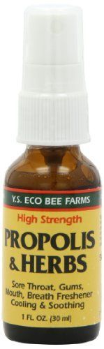 Propolis and Herbs Throat Spray YS Eco Bee Farms 1 oz Spray ** Learn more by visiting the image link.
