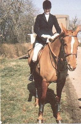 princess diana horse | Princess Diana - princess-diana Photo