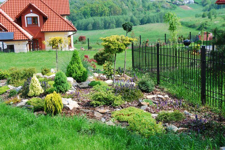 Skalniak - Ogrody ResGal Centrum ogrodnicze,projektowanie ogrodów