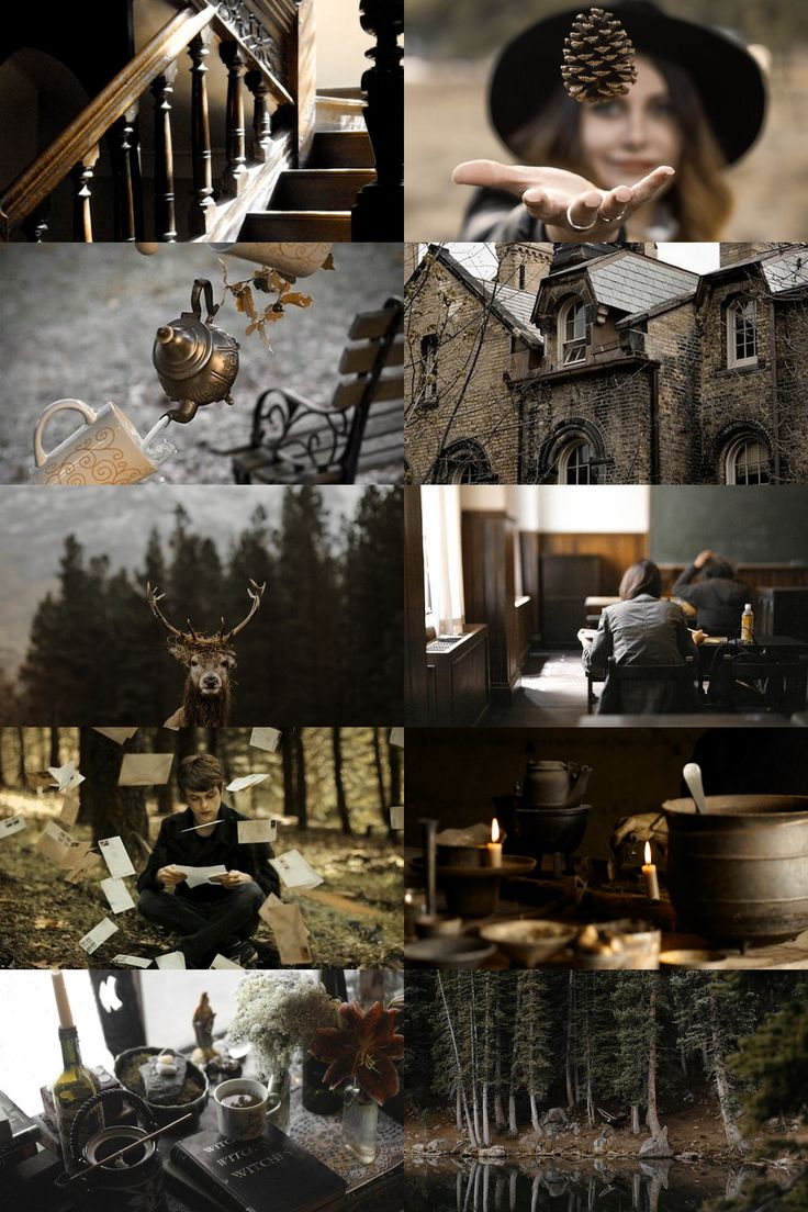 "ilvermorny aesthetic // more here ""The great North American school of magic was founded in the seventeenth century. It stands at the highest peak of Mount Greylock, where it is concealed from non-magic gaze by a variety of powerful enchantments,..."