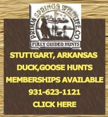 Located in the heart of the Grand Prairie 20 miles northwest of Stuttgart, Arkansas. 92,000 private acres of premier Arkansas duck hunting territory, both flooded rice fields and green timber. Many of our pits are allocated near the world famous Bayou Meto. Call: 931-623-1121