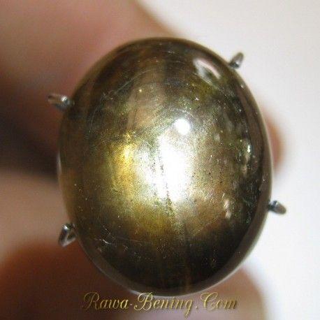 Jual Batu Mulia Natural Semi Golden Black Star Sapphire 9.40 carat www.rawa-bening.com