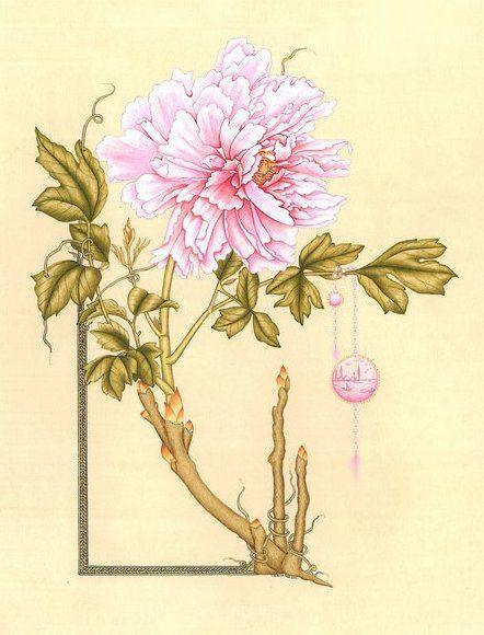 Hülya Aziz-Şakayık, 2009 #hulyaaziz #flower #drawing #miniature #stylized #tezhip #stilizecicek #illumination #art