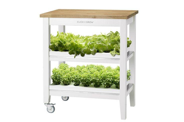 click-grow-smart-farm-12-1500x1000.jpg (1500×1000)