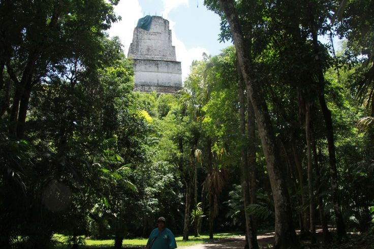 """""""...Tikal is one of the largest archaeological sites and urban centres of the pre-Columbian Maya civilization. It is located in the archaeological region of the Petén Basin in what is now northern Guatemala. Situated in the department of El Petén, the site is part of Guatemala's Tikal National Park and in 1979 it was declared a UNESCO World Heritage Site..."""" By @FeatheredNFree"""