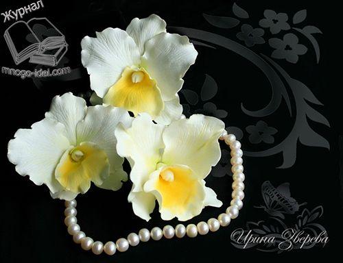 Мастер класс орхидея из фоамирана| Орхидея своими руками Очень много красивых цветов можно сделать своими руками из различного материала. Это могут быть пластиковые бутылки, кожа, фоамиран, атласная лента и т.д. Из любого материала цветы получаются очень красивы и необычные. К тому же они вам прослужат очень долгое время и будут вас радовать своей красотой. Сегодня …