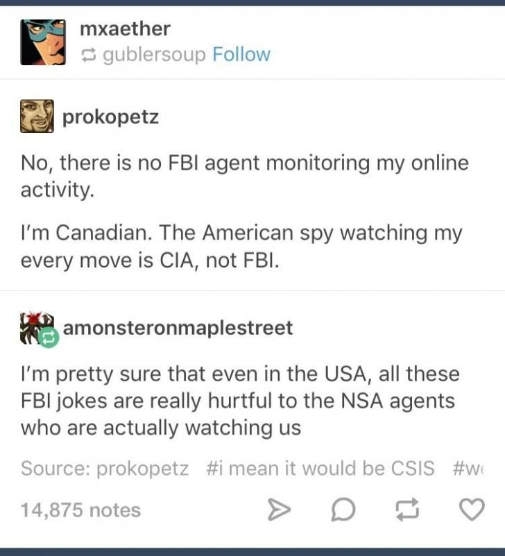 """THANK YOU. I was explaining this meme to someone and was like, """"I mean, technically it should be NSA agents watching us. The FBI is probably concerned with actual important things, but it's still funny""""."""