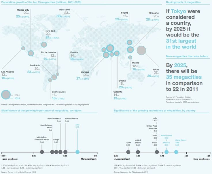 MEGACITIES: If Tokyo were considered a country, by 2025 it would be the 31st largest in the world. Source: Outlook on the Global Agenda 2014