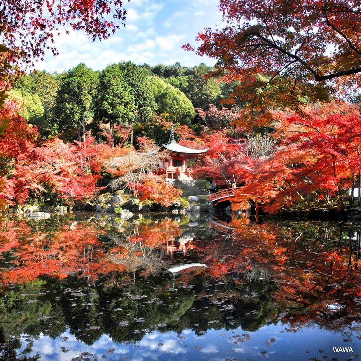 京都 醍醐寺 弁天池の紅葉 Panoramio - Photo explorer