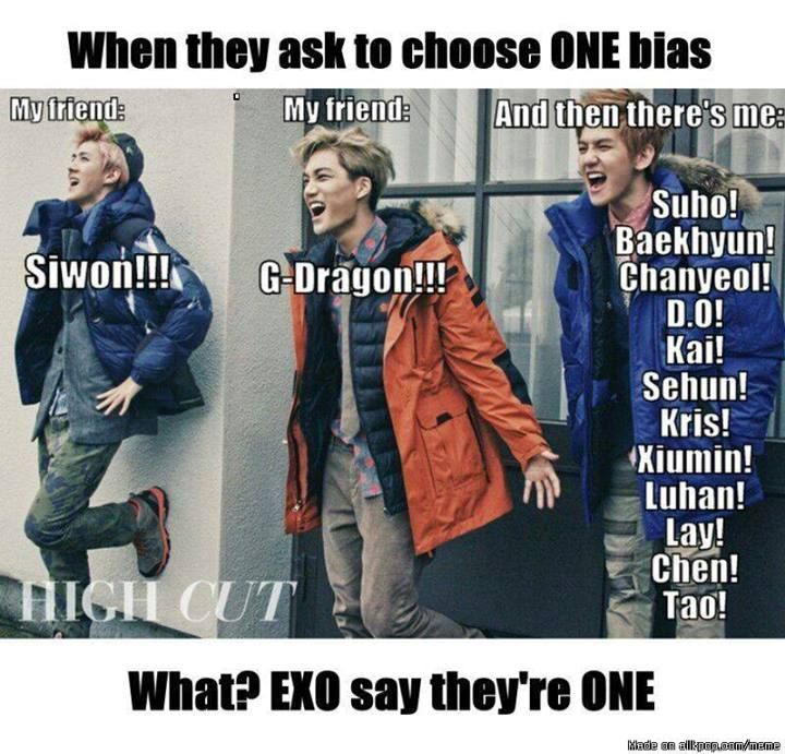 I choose Big Bang and EXO and 2ne1 and.. Wait. A bias, you say? .... Bhaahahahahahhahahaaaa! ONE JUST CANT SIMPLY HAVE ONLY ONE BIAS!