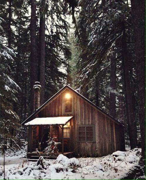 1000 Ideas About Log Siding On Pinterest Log Cabin