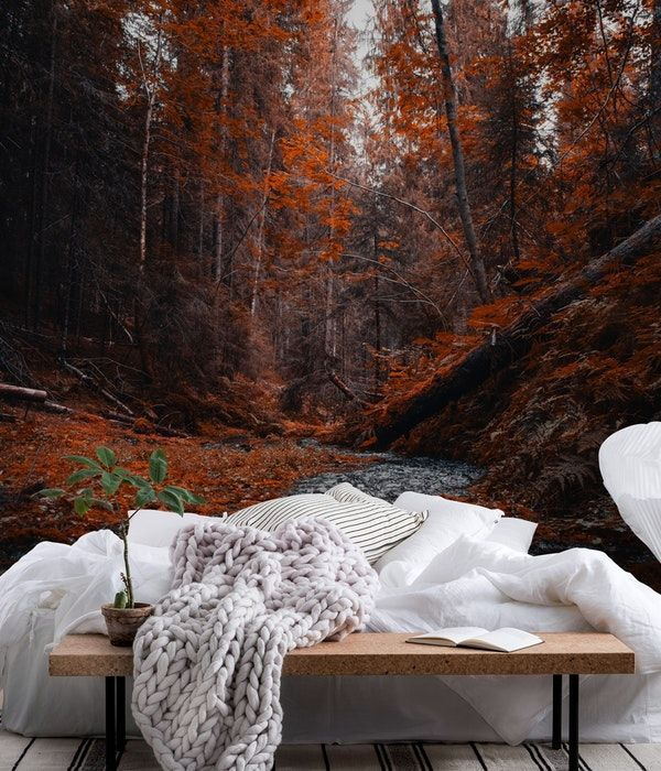 forest in hälsingland sweden wall mural nature wall muralsforest in hälsingland sweden wall mural from happywall tree water river wallmural happywall mural autumn wallmurals wallpaper trees wallpapers