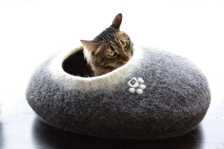 PEBBLE cat bed black with white rim and white interior by Wooppers