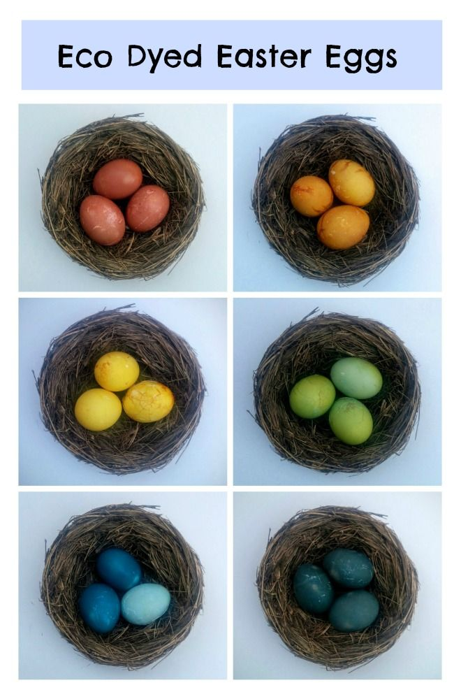 These gorgeous eggs were dyed with cabbage, beets, and turmeric! Click for the tutorial.