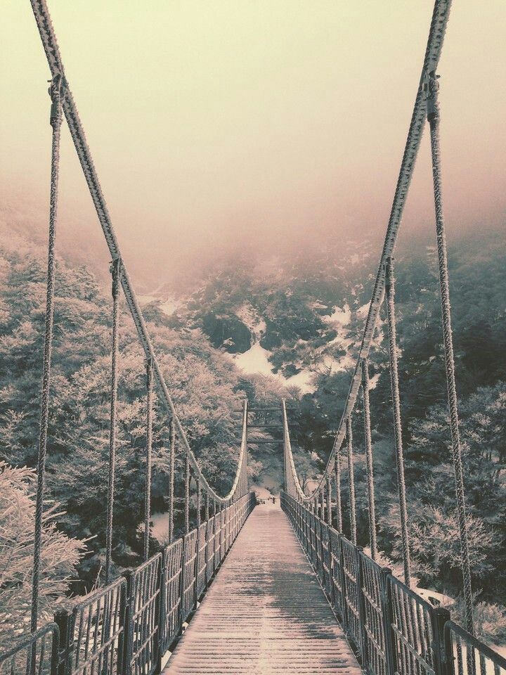 Bridge to everywhere