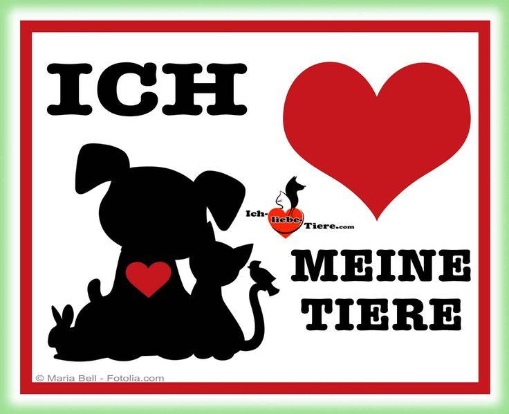 Ich liebe meine Tiere! >> http://www.ich-liebe-tiere.com/ <<