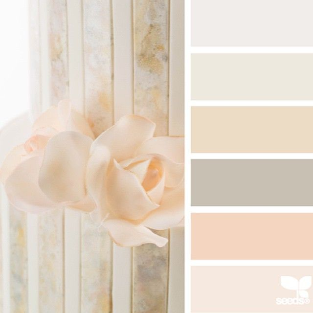 Best 25 taupe color palettes ideas on pinterest taupe for Soft taupe paint color