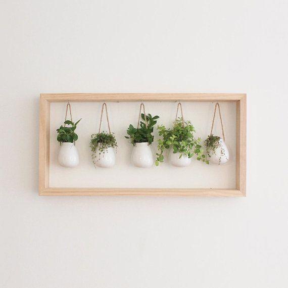 Indoor herb garden in wooden frame | Wall bracket …