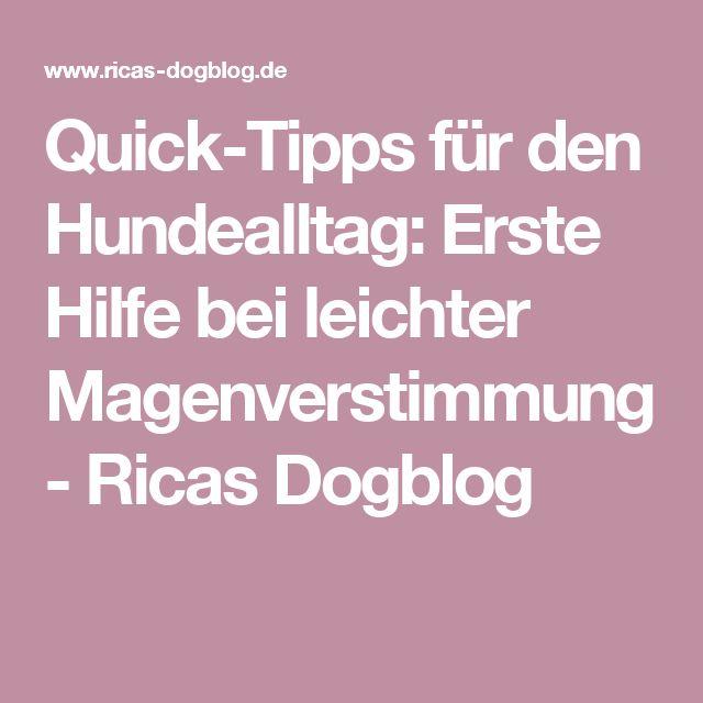 Quick-Tipps für den Hundealltag: Erste Hilfe bei leichter Magenverstimmung - Ricas Dogblog